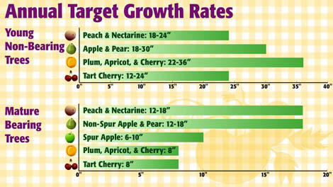 Annual Growth Rates
