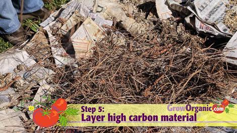 lasagna gardening carbon