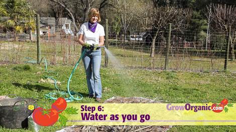 lasagna gardening watering