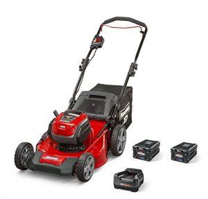 Snapper-SXDWM82K-Cordless-21-Inch-Lawn Mowers Battery